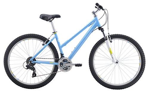 Best Mountain Bikes Under 300 With Buying Guide Mtbs Lab