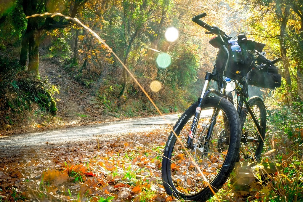 Best Mountain Bikes Under 300 Dollars with Buying Guide