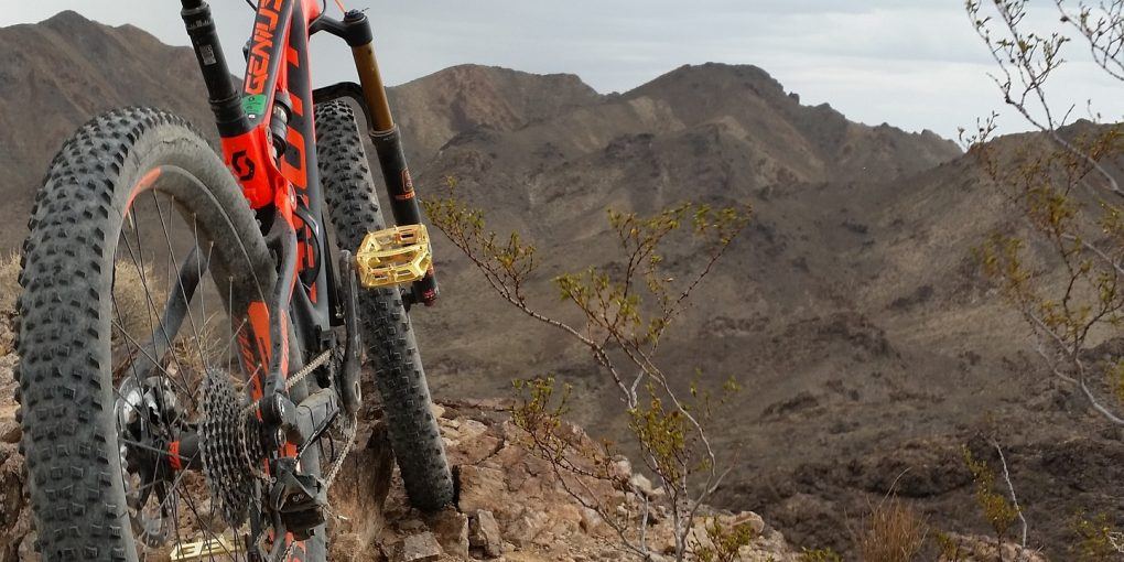 How to Buy a Mountain Bike that's Perfect for You Mountain Bicycle Lab