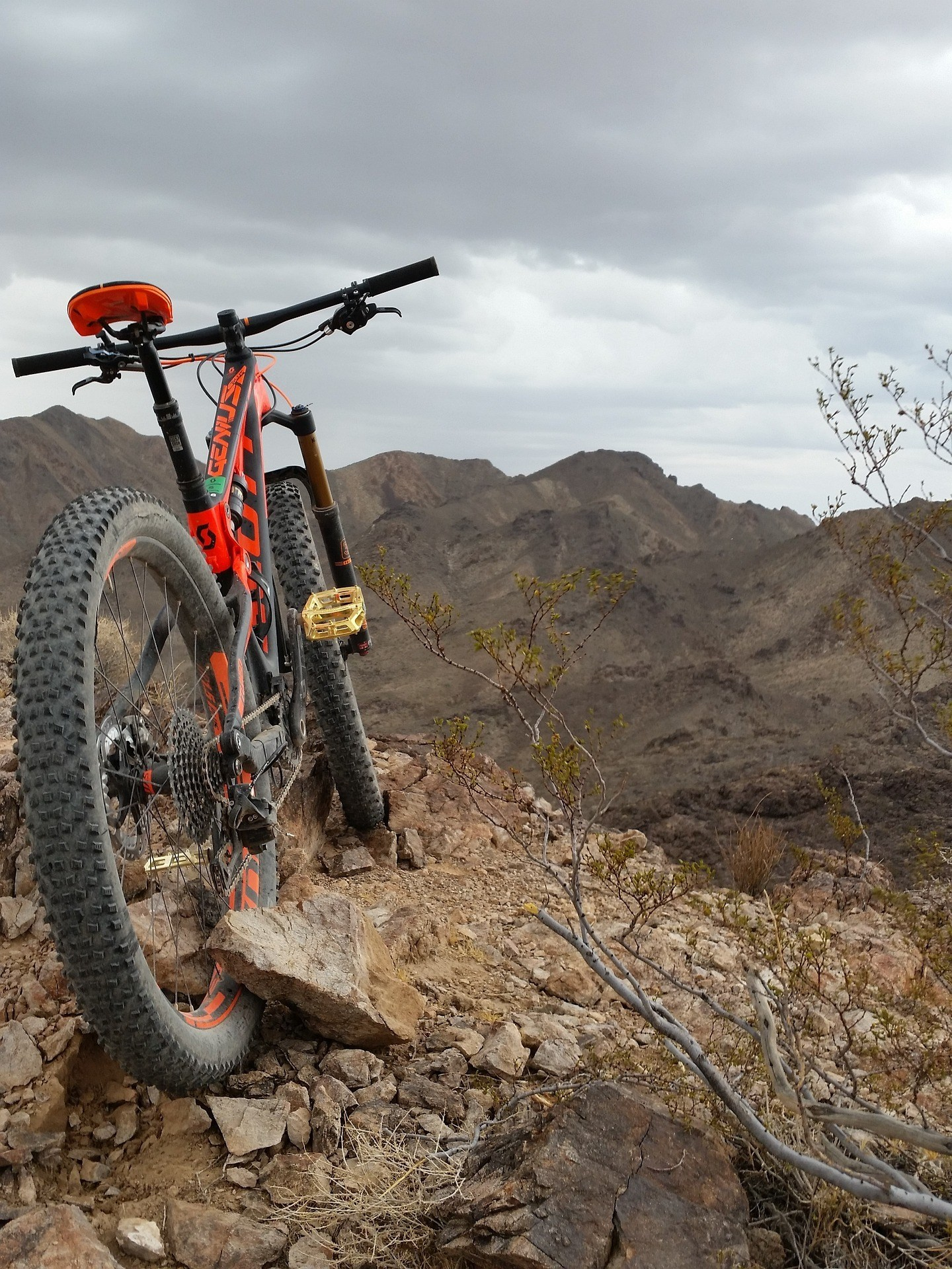 how to buy a mountain bike that s perfect for you