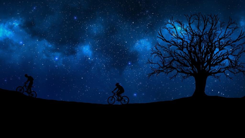 Mountain Biking Night Ride | Mountain Bicycle Lab